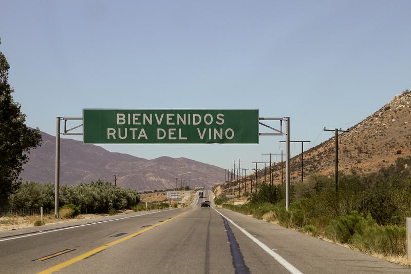 Ruta del Vino, Valle de Guadalupe, Baja California